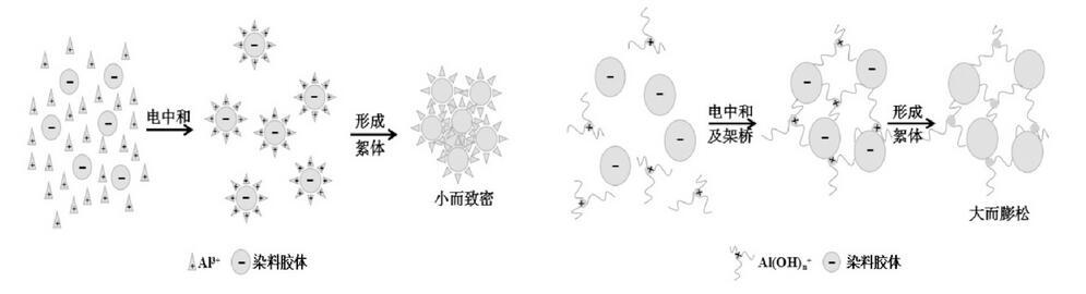 图1 硫酸铝与聚博猫平台的絮凝机理图